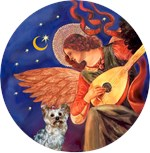 Yorkshire Terrier #13<br>Angel With Mando