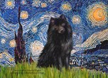 STARRY NIGHT<br>& Schipperke #2
