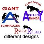 a few Agility & <br>rally rules designs