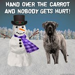 Hand Over the Carrot (Brindle)