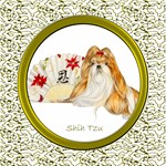 Shih Tzu Dog Breed Gifts and Cards