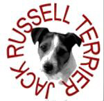 Jack Russell Terrier, Circle Lettering