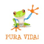 Pura Vida Tree Frog!