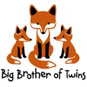 Big Brother of Twins - Mod Fox