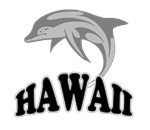 Hawaii Dolphin Souvenir