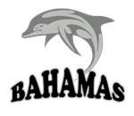 Bahamas Dolphin Souvenir