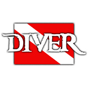 Pirate-style Diver Flag