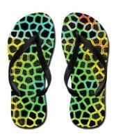 Flip Flops & Shoes!
