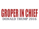 Groper In Chief