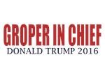 Groper In Chief
