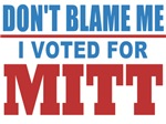 I Voted For Mitt
