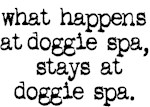 what happens at doggie spa