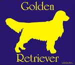 big yellow on blue Golden Retriever