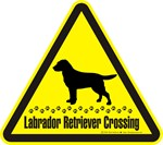  Labrador Retriever Crossing