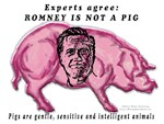 Experts agree: ROMENY IS NOT A PIG