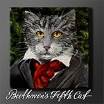 Beethoven's Fifth Cat