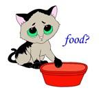 Food? (cat)