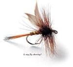 Fly fishing humor