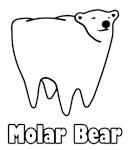 Molar Bear Polar Bear