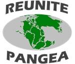 Reunite Pangea