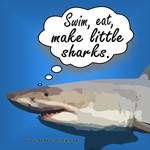Swim, eat, make little sharks