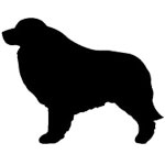 Great Pyrenees T-Shirts & Gifts