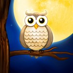 Night owl and full moon