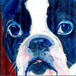 YOLO: Dogs Add Life
