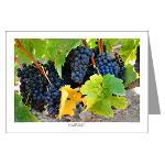 Wine Country Postcards and Greeting Cards