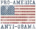 V. Pro-America Anti-Obama