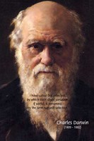 Charles Darwin Evolution Theory Natural Selection