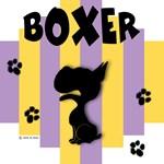Boxer Yellow/Purple Stripe