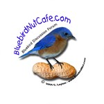 Bluebird Nut Cafe