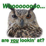 Whooo Are You <br> Lookin' at?