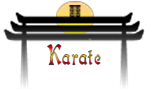 Karate T-shirts, apparel and gifts
