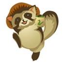Japanese Tanuki (Racoon Dog)