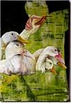 The Six of Ducks