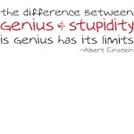 the difference between genius and stupidity