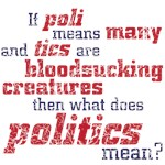 what does politics mean?