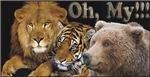 Lions,Tigers,Bears