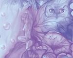 Violet Fairy