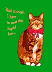 Funny tabby cat Christmas card