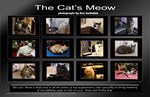 The Cat's Meow a wall calendar, prints and cards