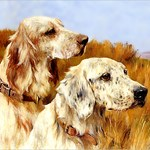 VINTAGE VICTORIAN DOG ART: TWO ENGLISH SETTERS