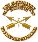 1st Bn 7th SFG w Branch