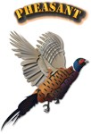 Pheasant with Text
