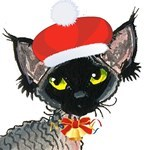 Devon Rex Seasonal Products