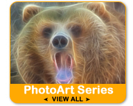 PhotoArt Animal and Nature Gifts