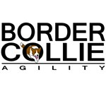 Border Collie Agility (brown)