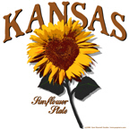 Kansas Heartland Sunflower